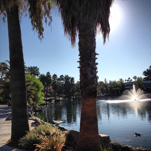 murrieta hot springs